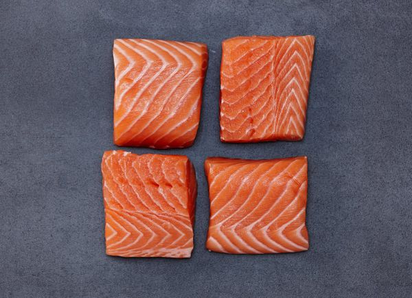 Fresh salmon filet